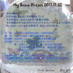 11月22日スノードームワークちらし.jpg